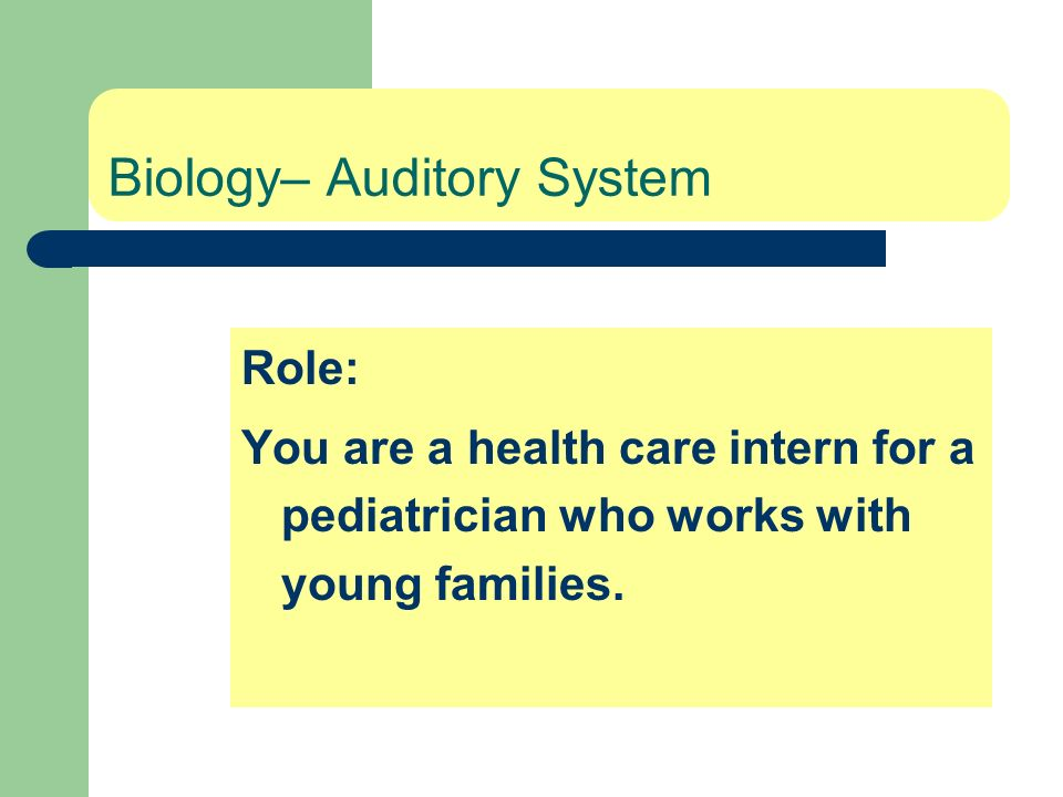 Biology– Auditory System Role: You are a health care intern for a pediatrician who works with young families.