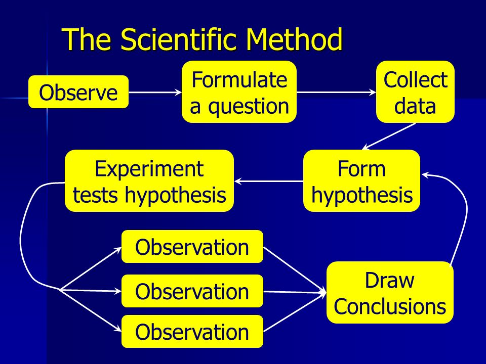 The Scientific Method Observe Collect data Form hypothesis Experiment tests hypothesis Observation Formulate a question Draw Conclusions
