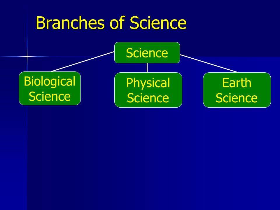 Biological Science Earth Science Physical Science Branches of Science Science
