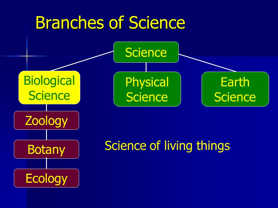 Biological Science Earth Science Physical Science Branches of Science Science of living things Science Zoology Botany Ecology