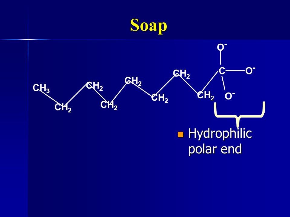 Soap Hydrophilic polar end Hydrophilic polar end CO-O- CH 3 CH 2 O-O- O-O-