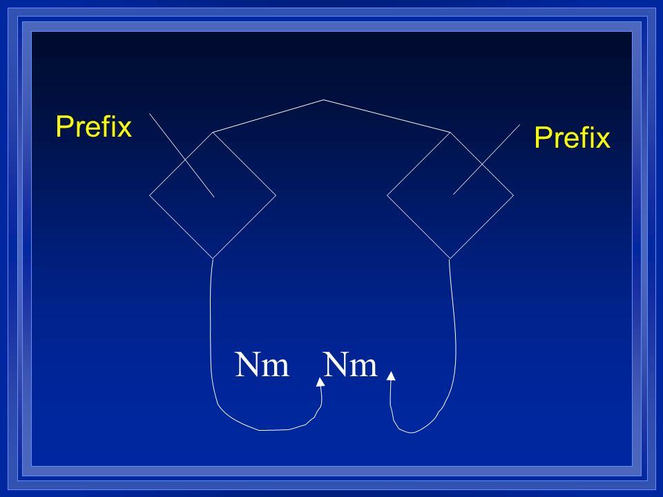 Nm Prefix