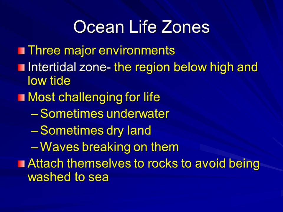 Ocean Life Zones Three major environments Intertidal zone- the region below high and low tide Most challenging for life –Sometimes underwater –Sometim