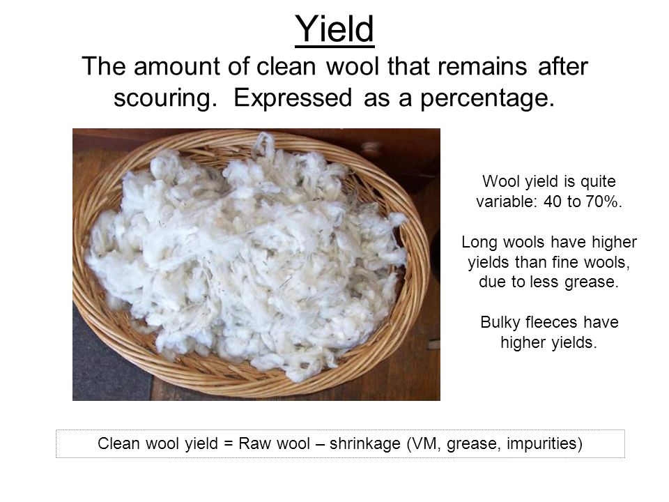 Yield The amount of clean wool that remains after scouring. Expressed as a percentage. Wool yield is quite variable: 40 to 70%. Long wools have higher