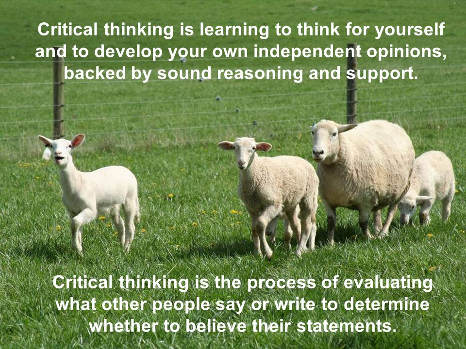 Critical thinking is learning to think for yourself and to develop your own independent opinions, backed by sound reasoning and support. Critical thin