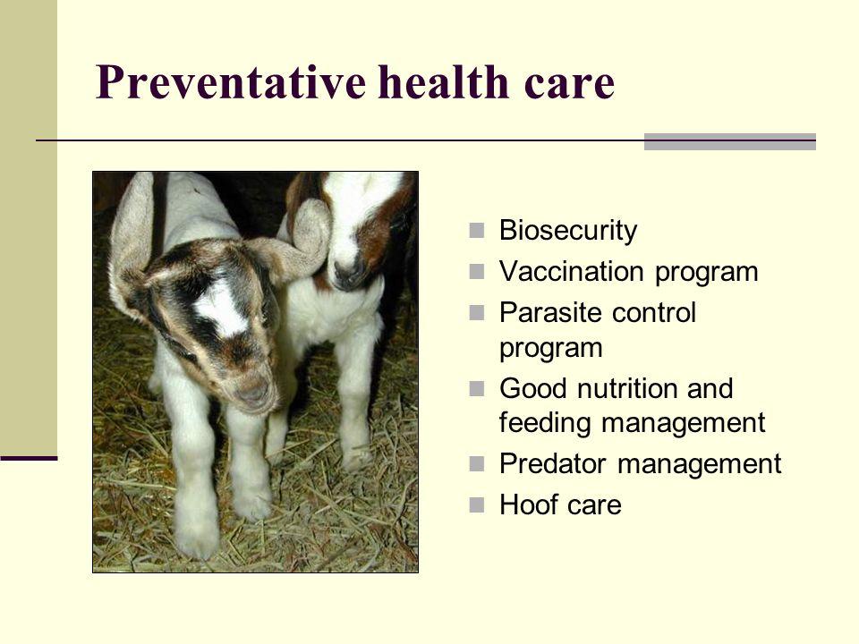 Preventative health care Biosecurity Vaccination program Parasite control program Good nutrition and feeding management Predator management Hoof care