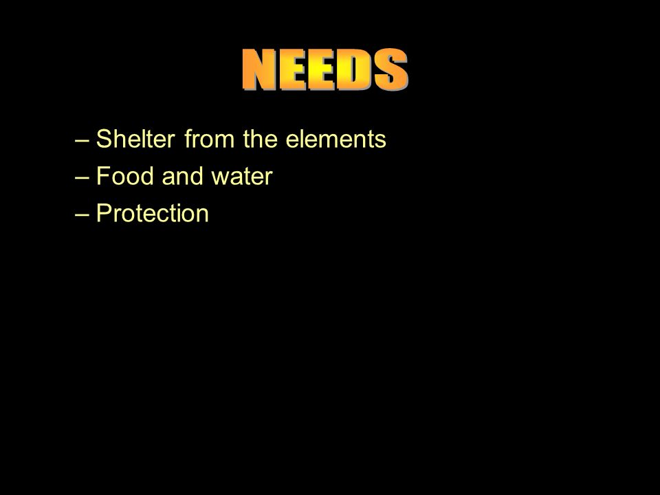 –Shelter from the elements –Food and water –Protection –Shelter from the elements –Food and water –Protection