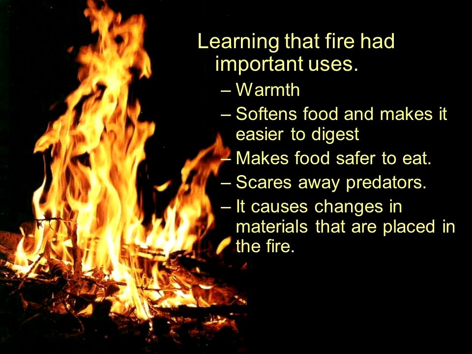 Learning that fire had important uses.