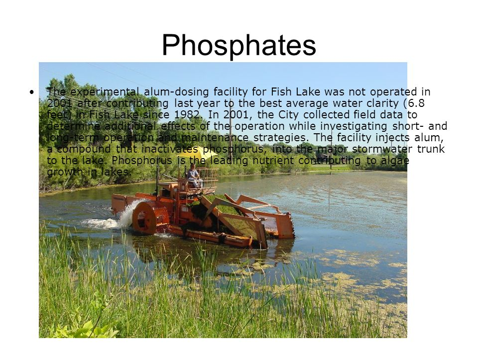 Phosphates The experimental alum-dosing facility for Fish Lake was not operated in 2001 after contributing last year to the best average water clarity