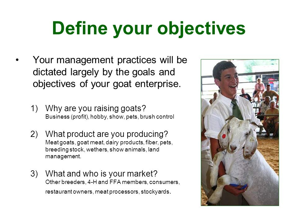 Define your objectives Your management practices will be dictated largely by the goals and objectives of your goat enterprise.