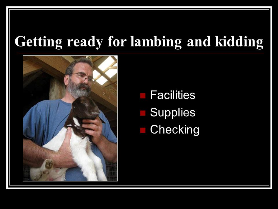 Getting ready for lambing and kidding Facilities Supplies Checking