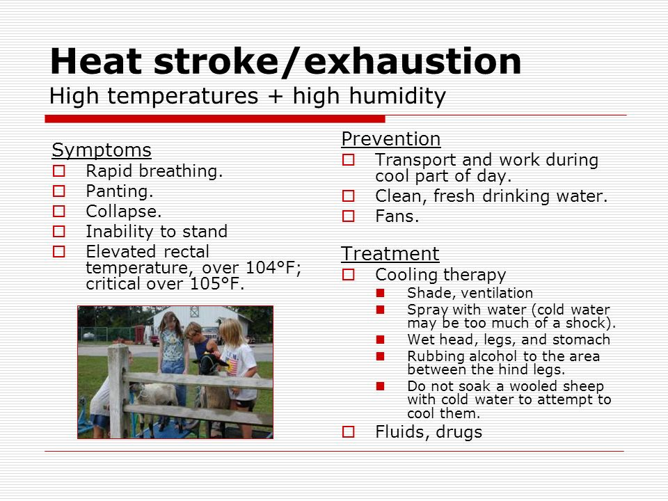 Heat stroke/exhaustion High temperatures + high humidity Symptoms Rapid breathing.