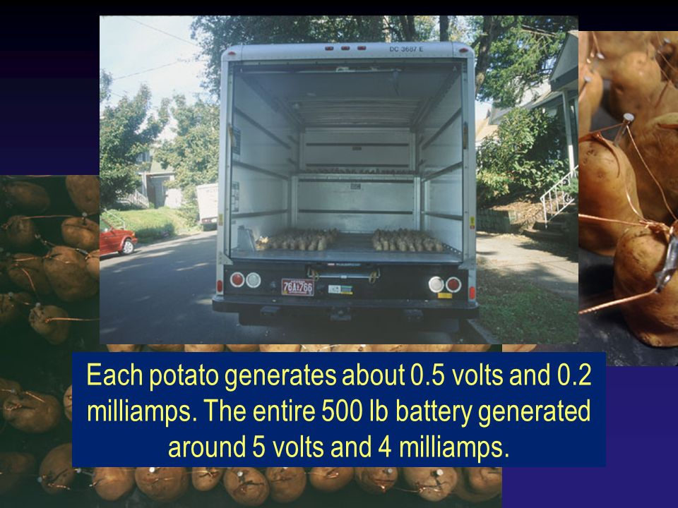 Each potato generates about 0.5 volts and 0.2 milliamps. The entire 500 lb battery generated around 5 volts and 4 milliamps.
