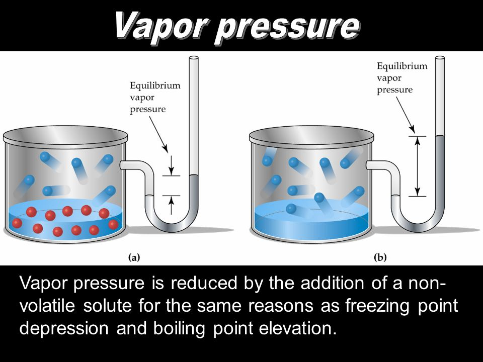 Vapor pressure is reduced by the addition of a non- volatile solute for the same reasons as freezing point depression and boiling point elevation.