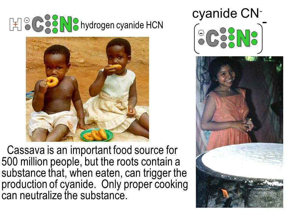 - - - cyanide CN - hydrogen cyanide HCN Cassava is an important food source for 500 million people, but the roots contain a substance that, when eaten, can trigger the production of cyanide.