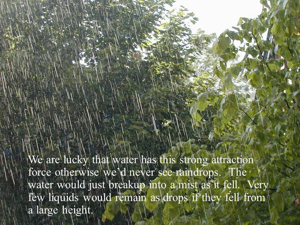 We are lucky that water has this strong attraction force otherwise wed never see raindrops.