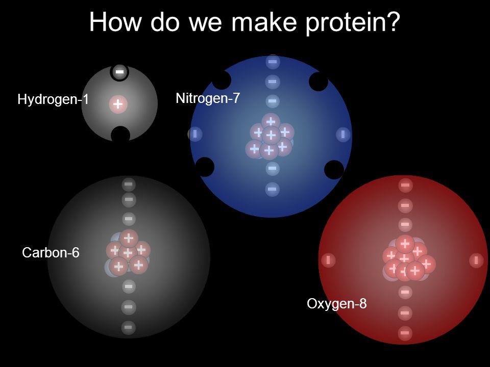 How do we make protein? Nitrogen-7 Carbon-6 Oxygen-8 Hydrogen-1
