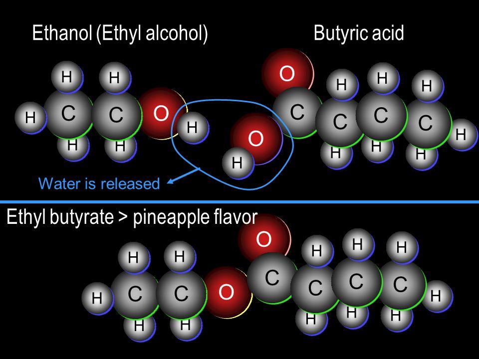 H H H H C C H H O O H H H H C C H H O O H H H H C C H H C C O O H H H H H H C C H H O O H H C C H H O O H H H H C C H H C C Butyric acidEthanol (Ethyl