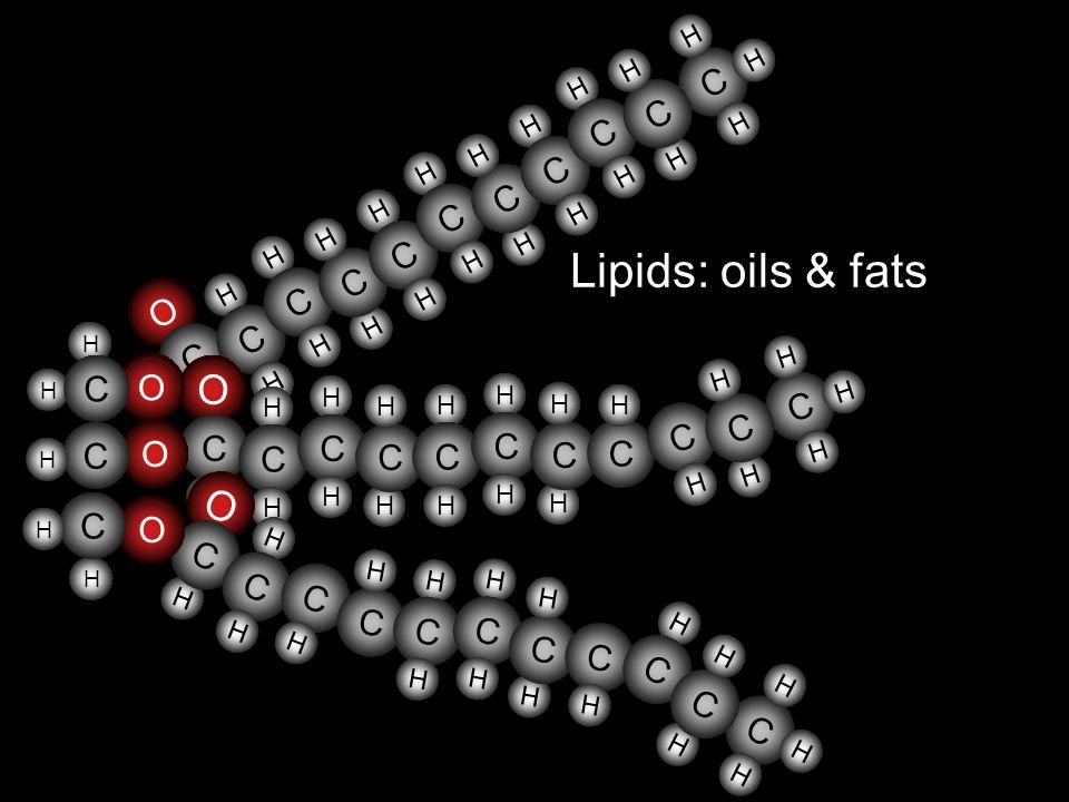 Lipids: oils & fats O H C H C H H C H H C H C H H H H C H H C H H C H H C H H C H H C H O H C H C H H C H H C H H C H H C H H C H C H C H H H C H H C