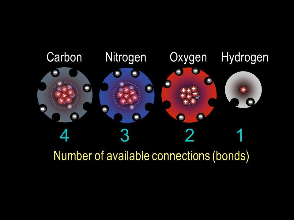 4 3 2 1 Carbon Nitrogen Oxygen Hydrogen Number of available connections (bonds)