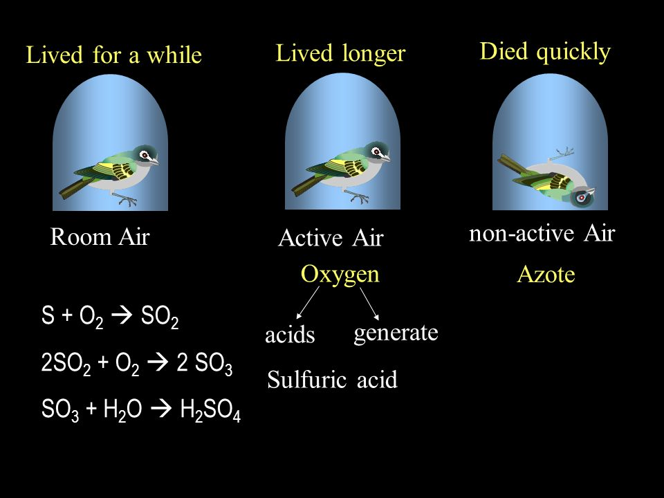 non-active Air Active Air Room Air Azote Oxygen generate acids Sulfuric acid Lived for a while Lived longer Died quickly S + O 2 SO 2 2SO 2 + O 2 2 SO