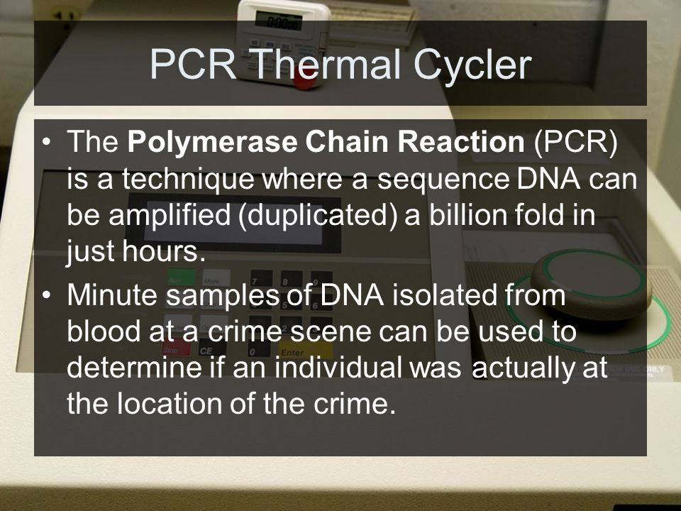 PCR Thermal Cycler The Polymerase Chain Reaction (PCR) is a technique where a sequence DNA can be amplified (duplicated) a billion fold in just hours.