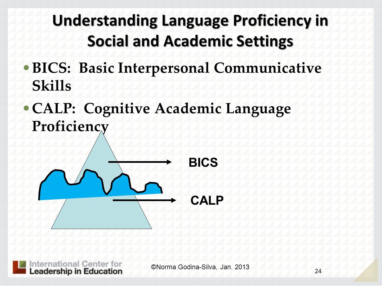 Focusing on Language 23