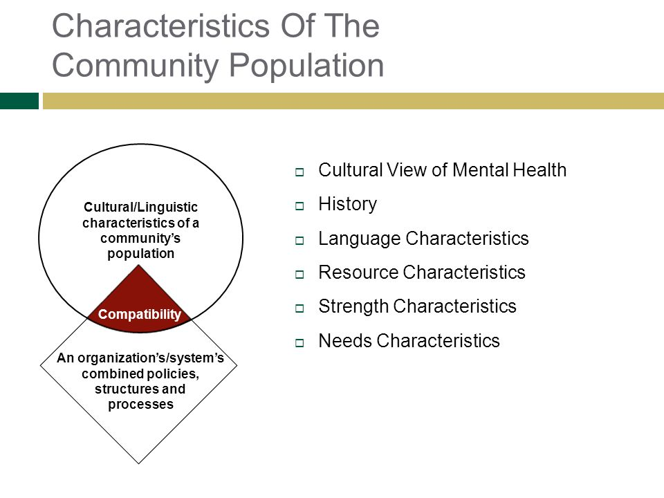 Characteristics Of The Community Population Cultural View of Mental Health History Language Characteristics Resource Characteristics Strength Characte