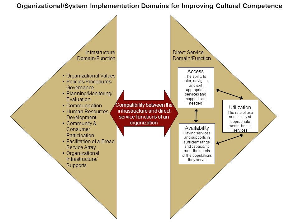 Infrastructure Domain/Function Direct Service Domain/Function Organizational Values Policies/Procedures/ Governance Planning/Monitoring/ Evaluation Co