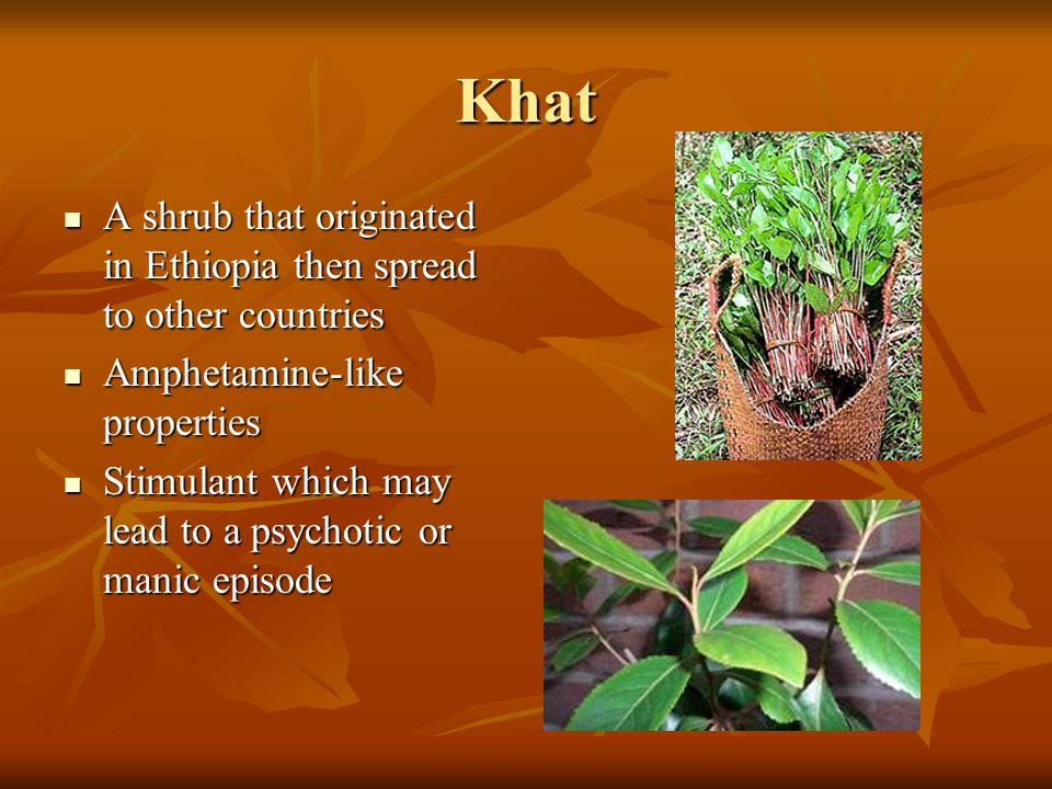 Khat A shrub that originated in Ethiopia then spread to other countries A shrub that originated in Ethiopia then spread to other countries Amphetamine-like properties Amphetamine-like properties Stimulant which may lead to a psychotic or manic episode Stimulant which may lead to a psychotic or manic episode