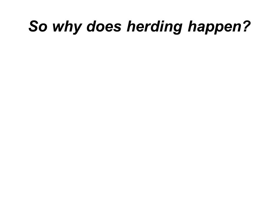 So why does herding happen?
