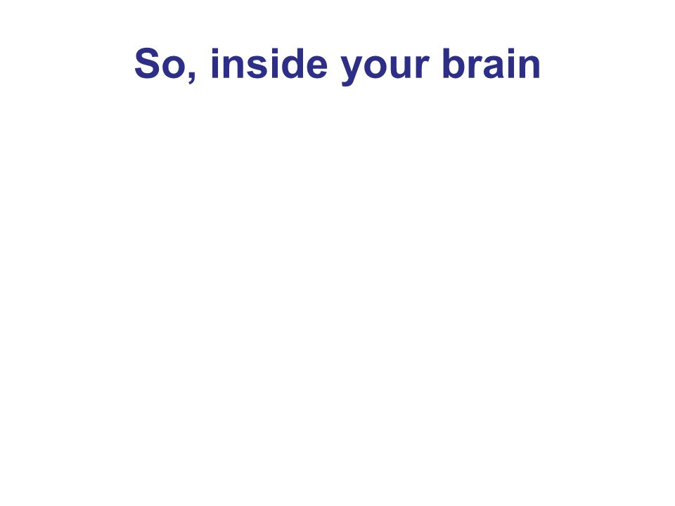 So, inside your brain