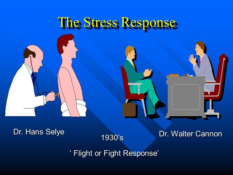 The Stress Response 1930s Dr. Hans Selye Dr. Walter Cannon Flight or Fight Response Flight or Fight Response