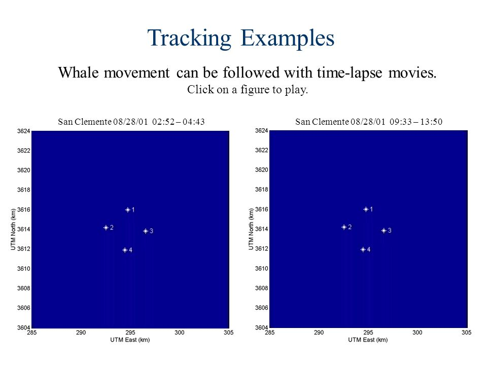 Whale movement can be followed with time-lapse movies.