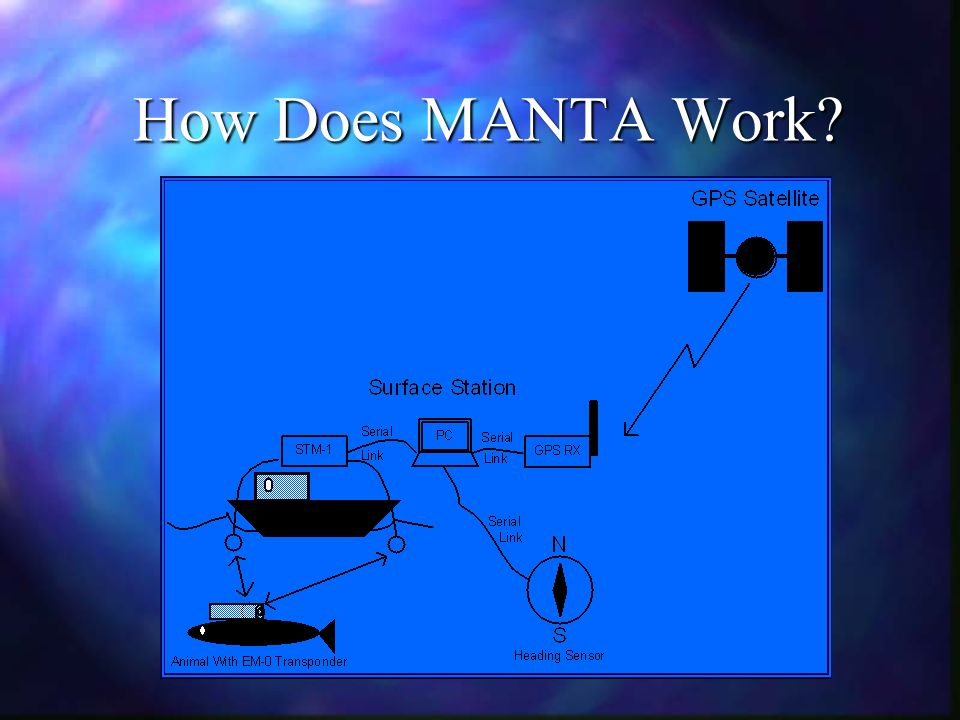 How Does MANTA Work