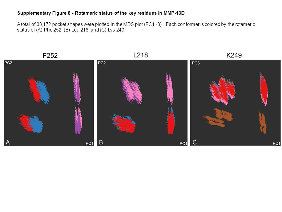 Supplementary Figure 8 - Rotameric status of the key residues in MMP-13D A total of 33,172 pocket shapes were plotted in the MDS plot (PC1~3).