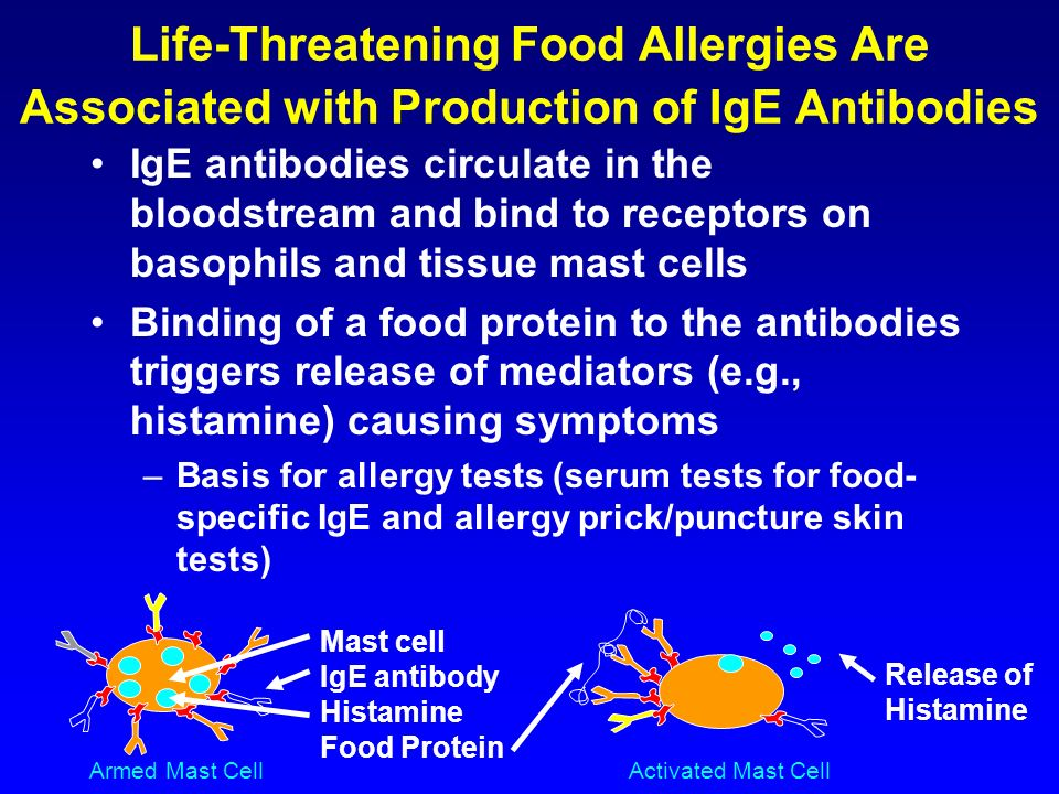 Life-Threatening Food Allergies Are Associated with Production of IgE Antibodies IgE antibodies circulate in the bloodstream and bind to receptors on