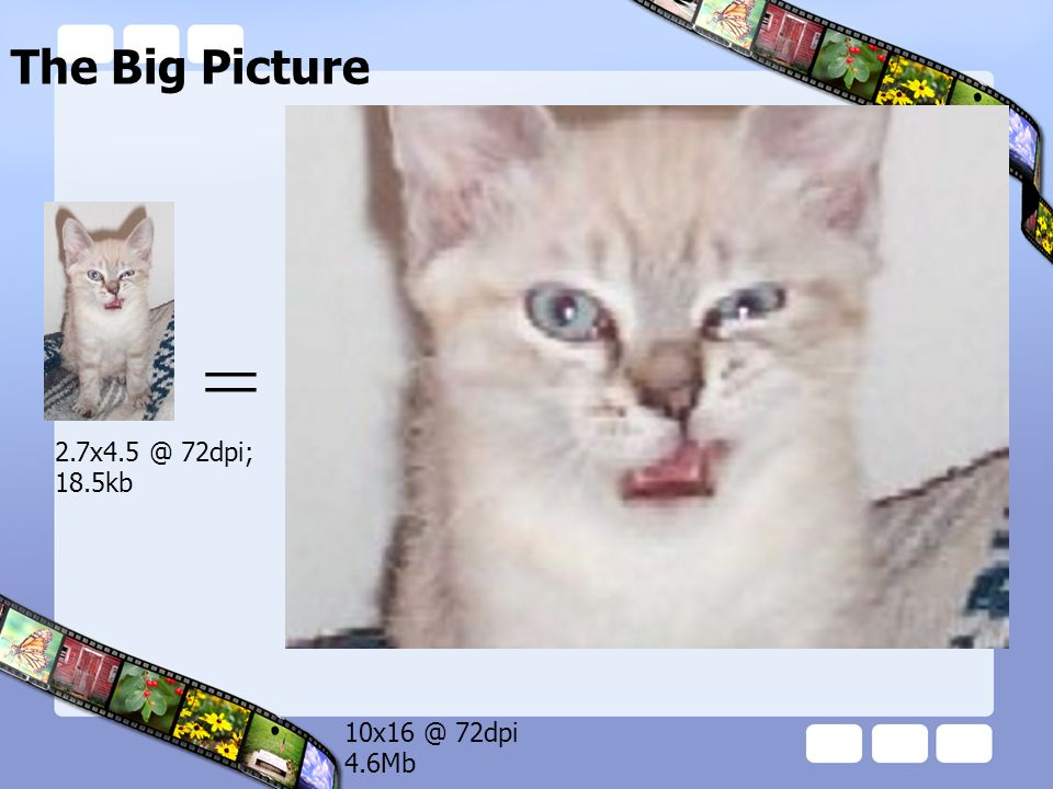The Big Picture = 10x16 @ 72dpi 4.6Mb 2.7x4.5 @ 72dpi; 18.5kb