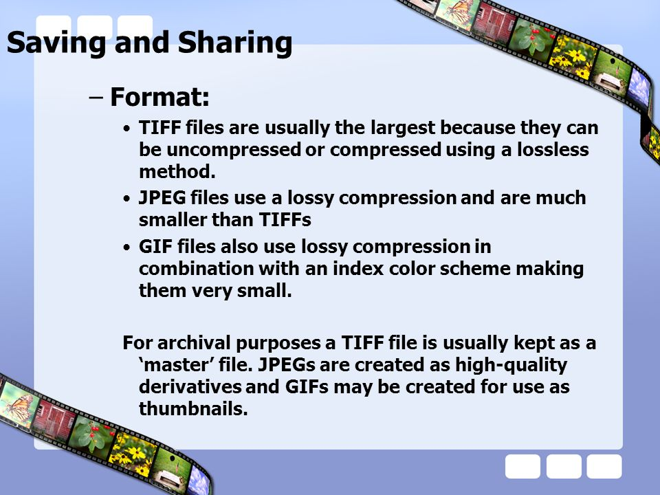Saving and Sharing –Format: TIFF files are usually the largest because they can be uncompressed or compressed using a lossless method. JPEG files use