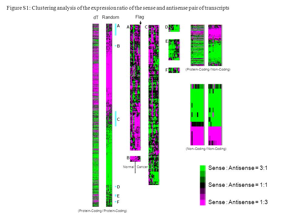 (a) Plots of (protein-coding, protein-coding) pairs Figure S2: Changes in expression for sense-antisense gene pairs in cancer tissues, compared with surrounding normal tissues.