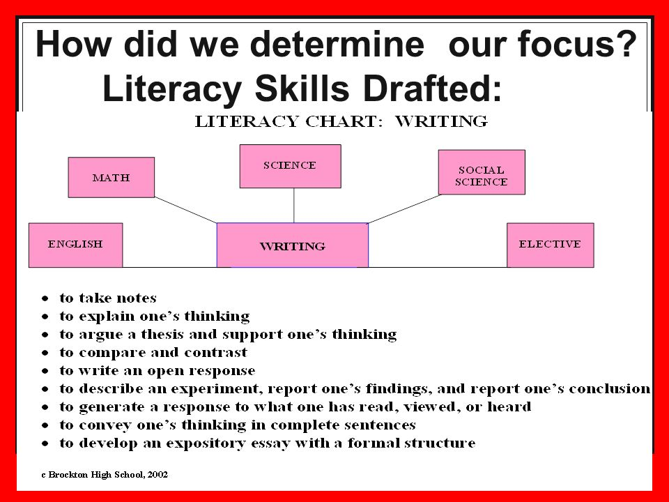 30 How did we determine our focus? Literacy Skills Drafted: