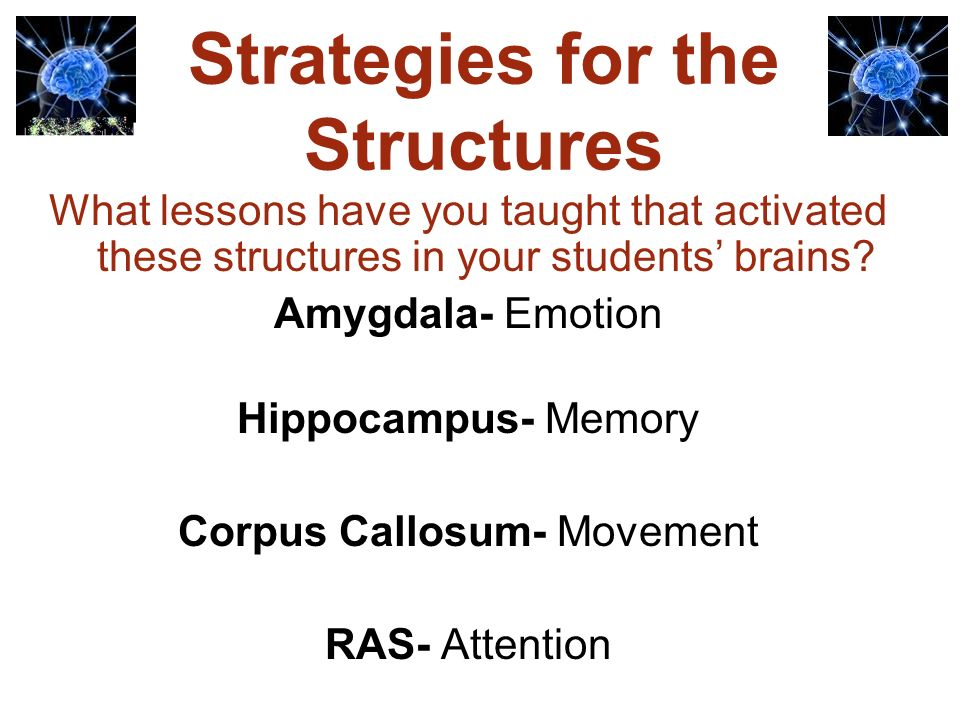 Neuroscience & Education 1.Who are todays struggling students.