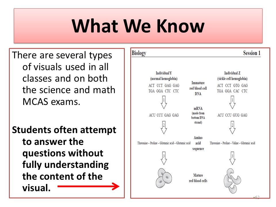 What We Know There are several types of visuals used in all classes and on both the science and math MCAS exams. Students often attempt to answer the