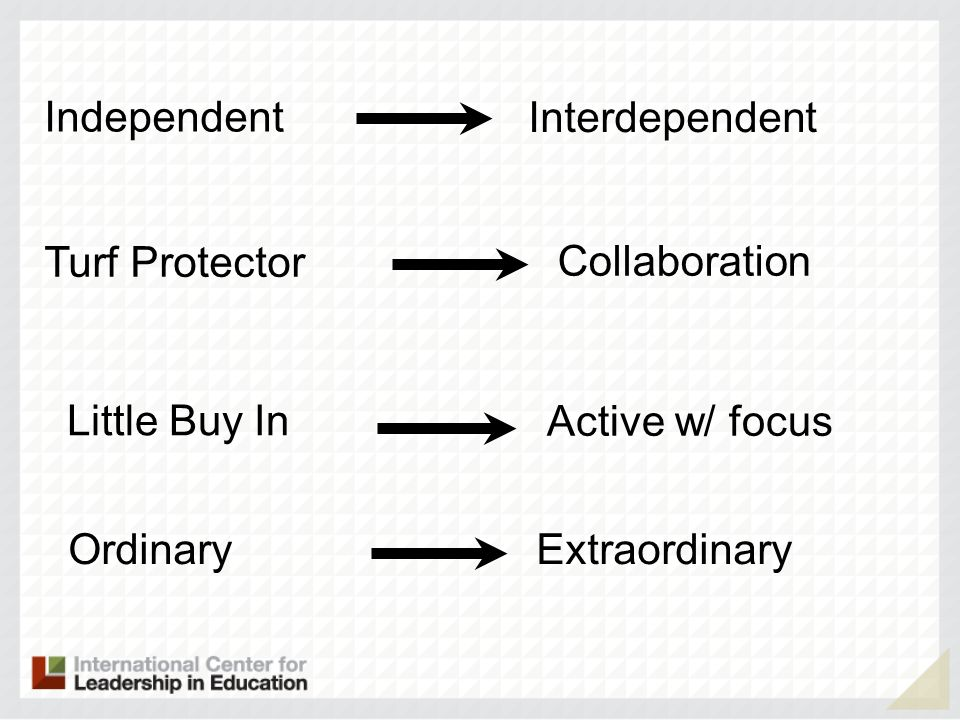 Independent Interdependent Collaboration Turf Protector Active w/ focus Little Buy In ExtraordinaryOrdinary
