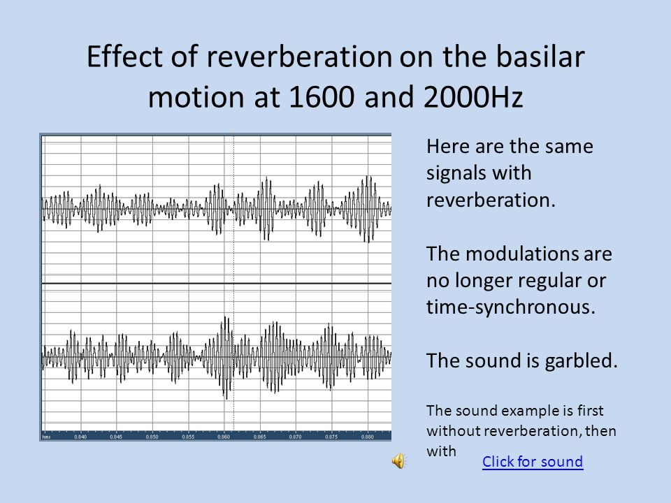 Effect of reverberation on the basilar motion at 1600 and 2000Hz Here are the same signals with reverberation.