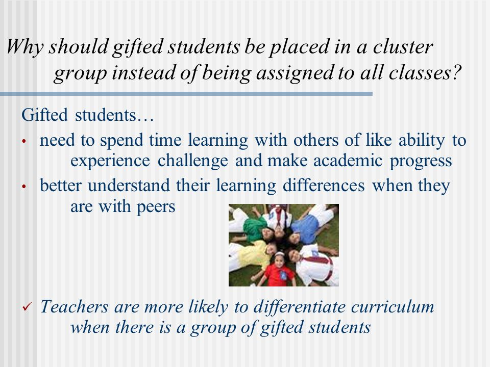 Why should gifted students be placed in a cluster group instead of being assigned to all classes? Gifted students… need to spend time learning with ot