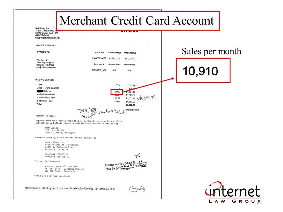 Merchant Credit Card Account Sales per month