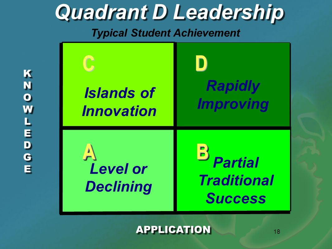 18 KNOWLEDGEKNOWLEDGE KNOWLEDGEKNOWLEDGE Quadrant D Leadership APPLICATION AABB D C Level or Declining Partial Traditional Success Islands of Innovati