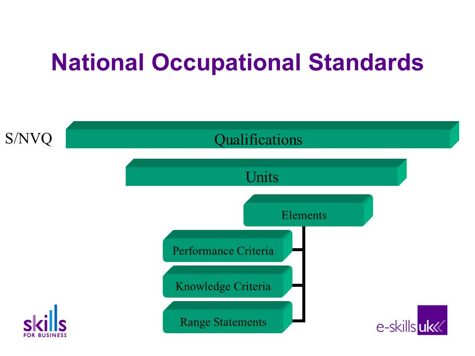 National Occupational Standards Units Qualifications Elements Performance Criteria Knowledge Criteria Range Statements S/NVQ