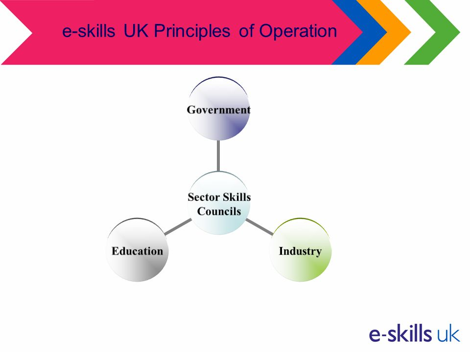 e-skills UK Principles of Operation Sector Skills Councils GovernmentIndustryEducation
